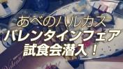 choco_harukasu
